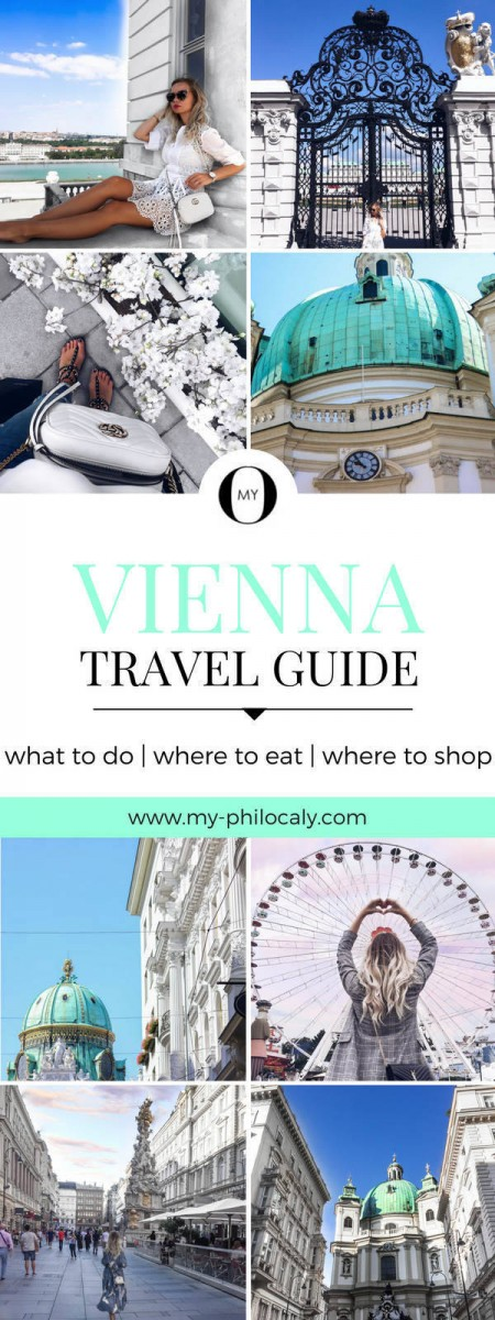 Vienna Travel Guide Pin